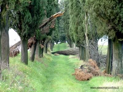 www-sassomarconifoto-it-017