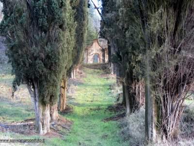 www-sassomarconifoto-it-027