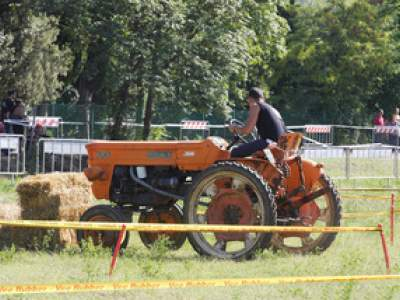 tractor-sdaz-2010-109