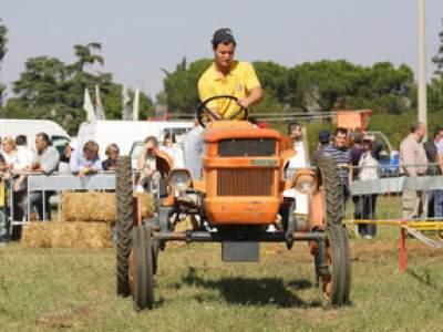 tractor-sdaz-2010-113