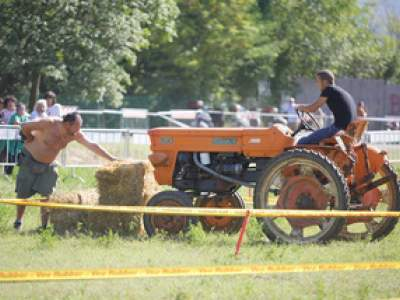 tractor-sdaz-2010-130