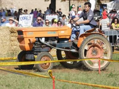 tractor-sdaz-2010-138