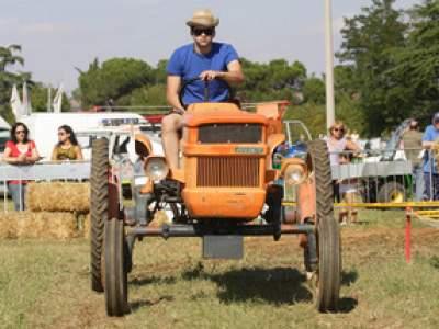 tractor-sdaz-2010-153