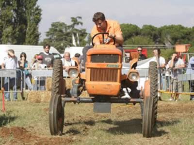 tractor-sdaz-2010-182