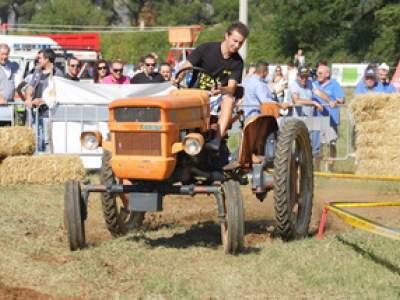 tractor-sdaz-2010-186