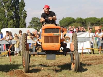tractor-sdaz-2010-190