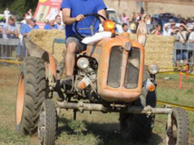 tractor-sdaz-2010-208