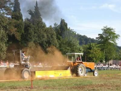 tractor-sdaz-2010-278