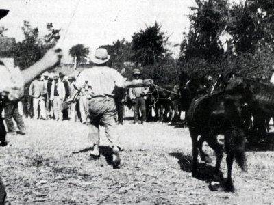 8 settembre 1906 - Fiera di Pontecchio