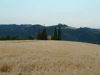 26 - Villa Quiete - Sasso Marconi
