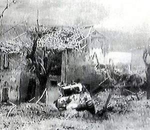 Truppe 6° Armata Sudafricana - 4