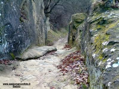 www-sassomarconifoto-it-021