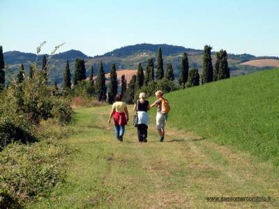 www-sassomarconifoto-it-023