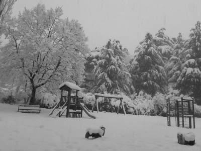 gloria-rossi-silenzio-nel-parco