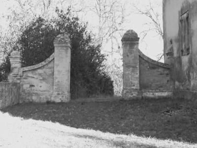 mariarosa-grillini-antichita-sulle-nostre-colline-1