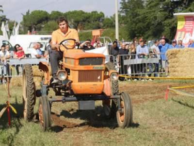 tractor-sdaz-2010-180