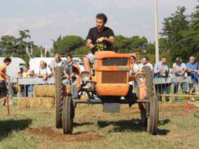 tractor-sdaz-2010-184