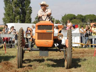 tractor-sdaz-2010-202