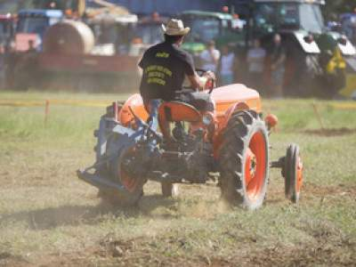 tractor-sdaz-2010-207