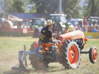 tractor-sdaz-2010-209