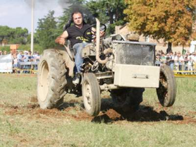 tractor-sdaz-2010-213