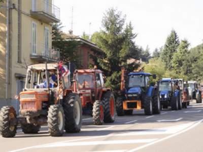 tractor-sdaz-2010-32