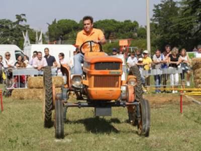 tractor-sdaz-2010-79