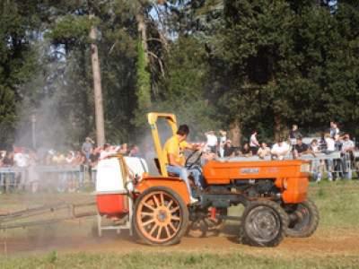 tractor-sdaz-2010-8