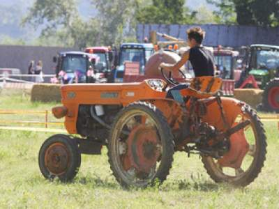 tractor-sdaz-2010-84