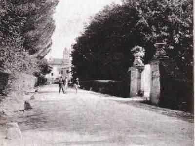 Viale dei Pini nel 1902