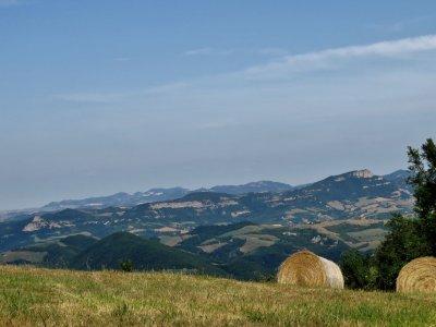 024 - panoramica di Sasso Marconi