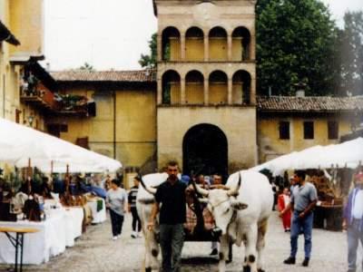 Palazzo Rossi 30