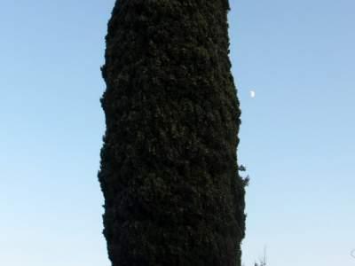Prati di Mugnano - 05