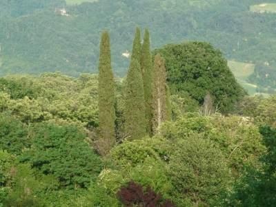 20 - Villa Quiete - Sasso Marconi